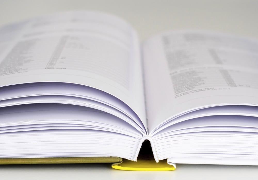 Prestamos3_diccionario